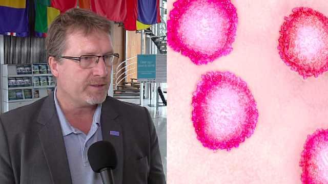 WHO:新型肺炎症状或取决于体质