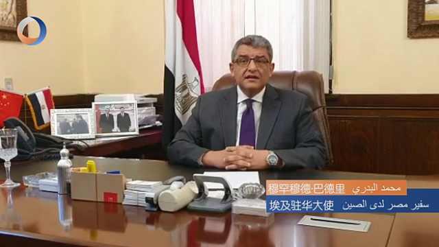阿拉伯各界人士:我们与中国在一起