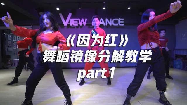 《因为红》舞蹈镜像分解教学part1