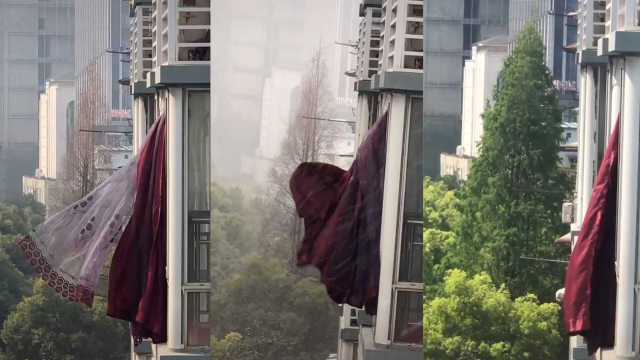 武汉市民拍邻居窗帘两个月:从封城到开城,一直盼着对方回家