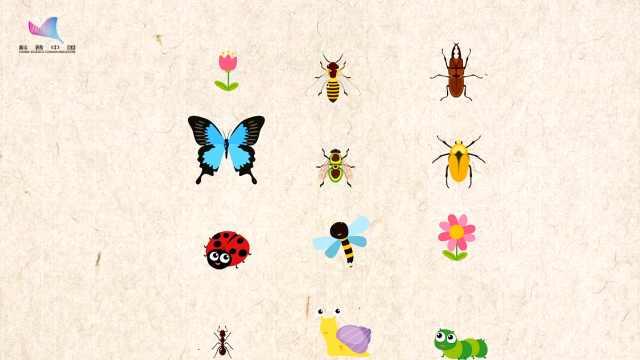 生物多样性日,保护地球生态环境