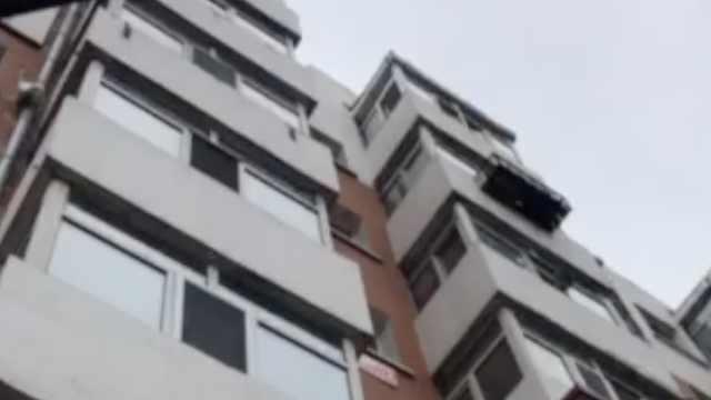 猫主人回应高空坠猫砸晕老人:猫自己跳的楼,对方要15万太多了