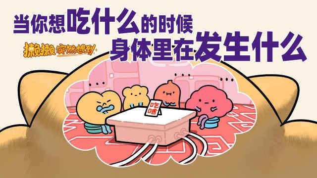 你在想吃什么的时候,身体里在发生什么(上)
