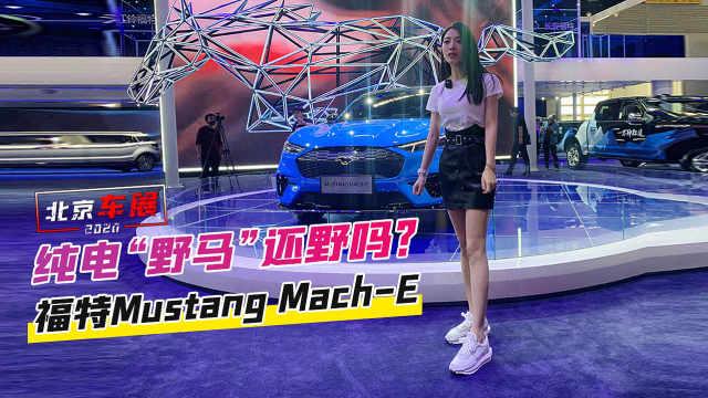 """北京车展:纯电""""野马""""还野吗?实拍福特Mustang Mach-E"""