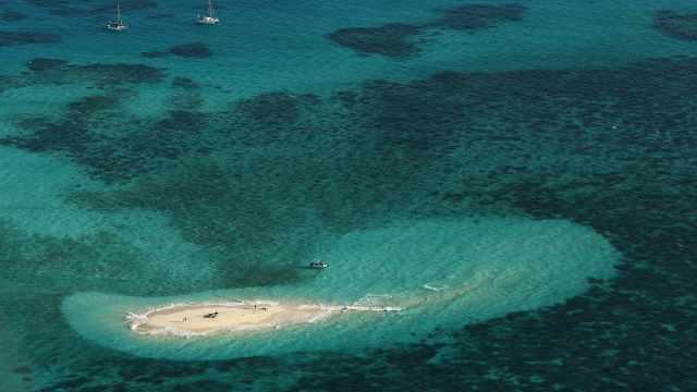 过去20年,澳大利亚大堡礁珊瑚群消失一半,主要因气候变化