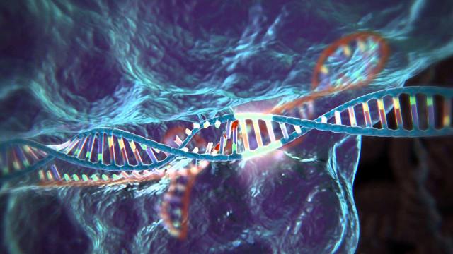 中国科学家为癌症治疗取得重大进展