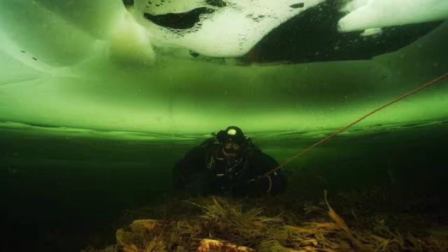 潜行天下:聆听极地海洋的呼吸