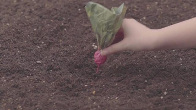 日本这发明能让农民收入翻好几倍