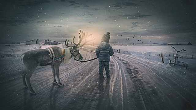 """一起走进""""中国最后的使鹿部落"""""""