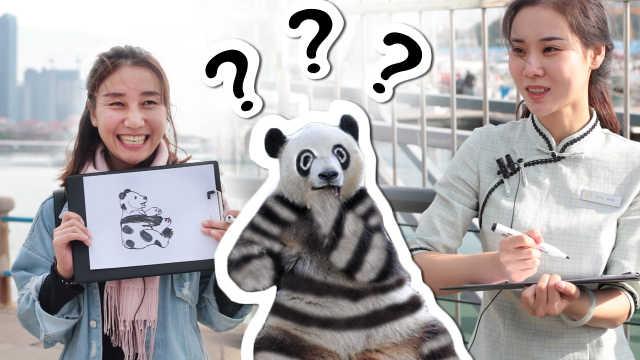 街头测试路人给大熊猫涂色