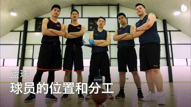 sikana带你了解篮球球员的位置分工