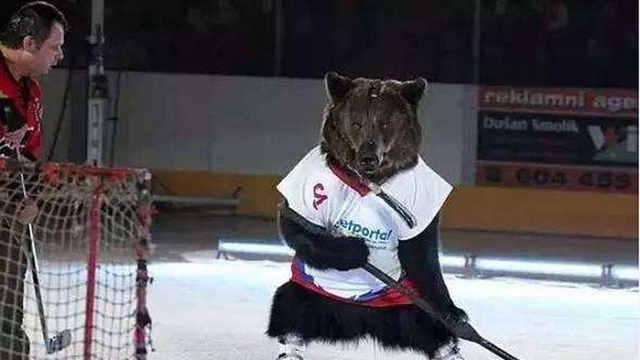 预告|冰场有熊出没,小心!