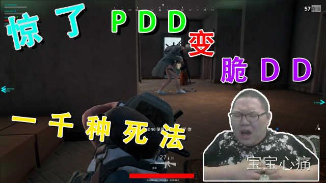 PDD的一千种作死