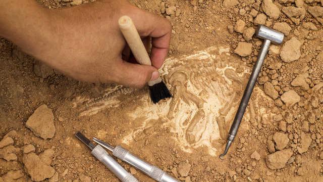 考古和盗墓到底有什么区别?