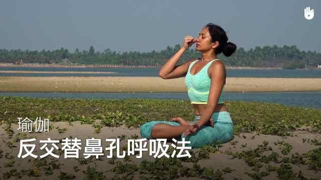 sikana瑜伽教程:反交替鼻孔呼吸法