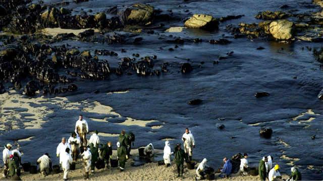 14万吨石油倒在大海10年后什么变化