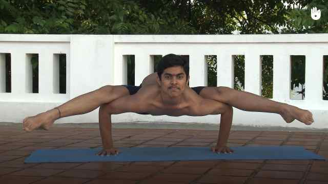 印度古式瑜伽教学:苍鹭式