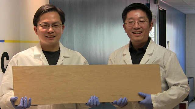 """科学家开发硬如钢铁的""""超级木头"""""""