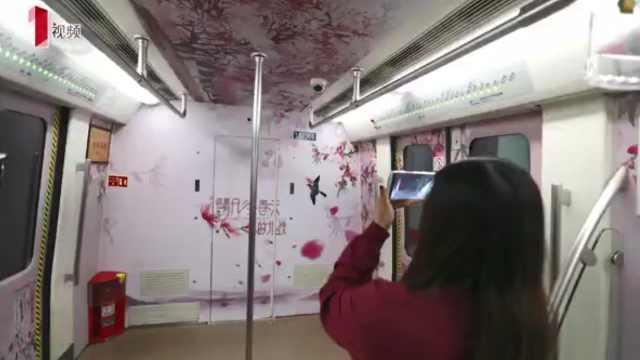 地铁2号线桃花主题列车今日上线