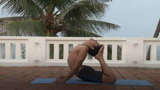 印度古式瑜伽教学:眼镜蛇式