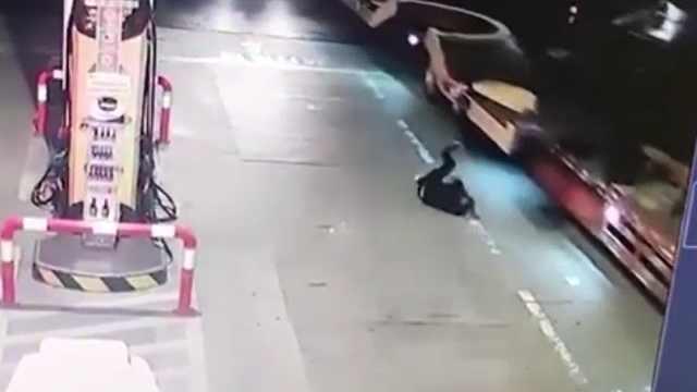 他加油站低头玩手机,被半挂车撞倒