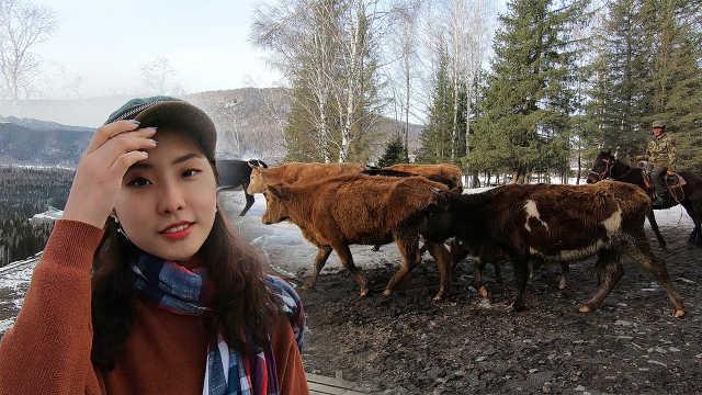 美女厌倦都市,到新疆体验放牧生活