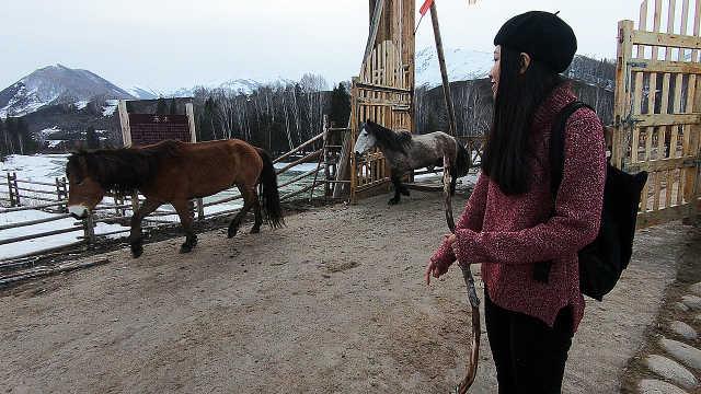 实拍中国最美乡村:轻歌牧马慢生活