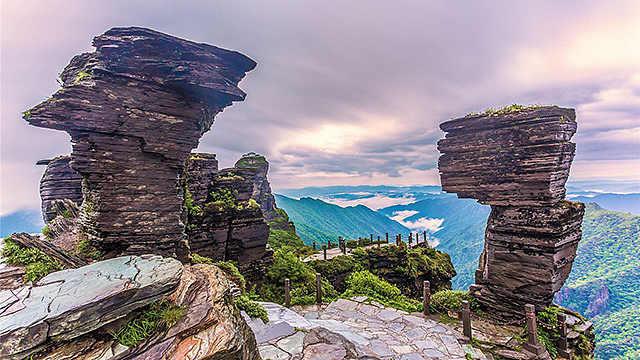 梵净山:大自然的基因宝库