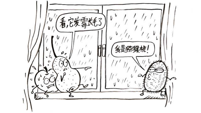 梅雨天,发病天