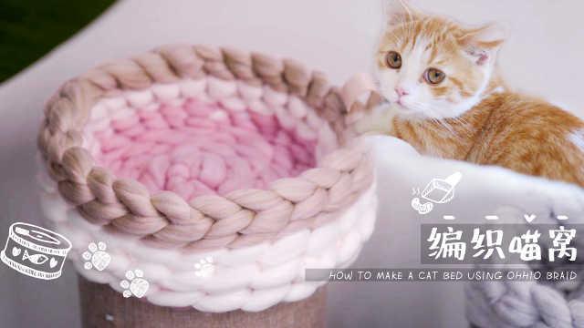 毛线就能做猫窝,主子看了都开心