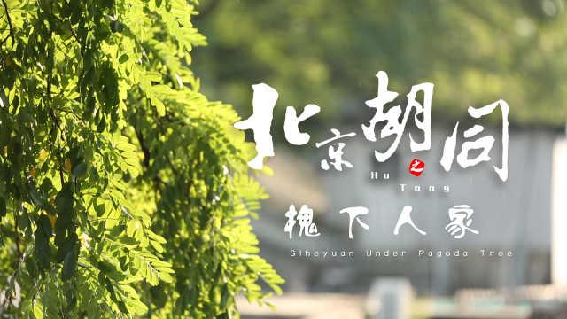北京胡同:门当户对的四合院文化