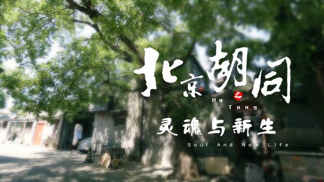 """北京胡同:""""家""""文化的与时俱进"""