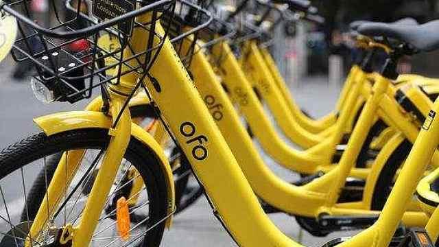 上海凤凰自行车把ofo告上法庭