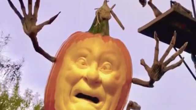 把南瓜雕成鬼脸 ,摆在家里不怕吗