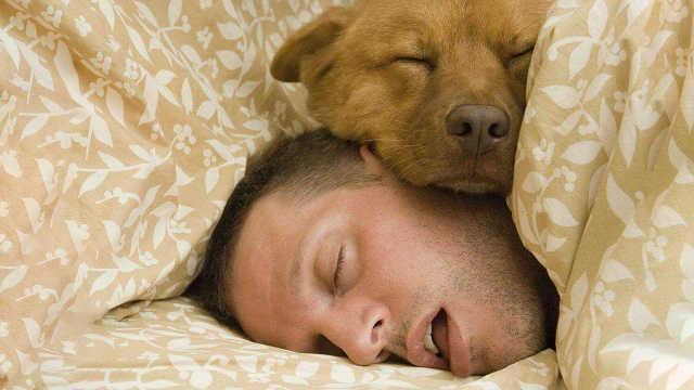 为什么人类不像动物一样冬眠?