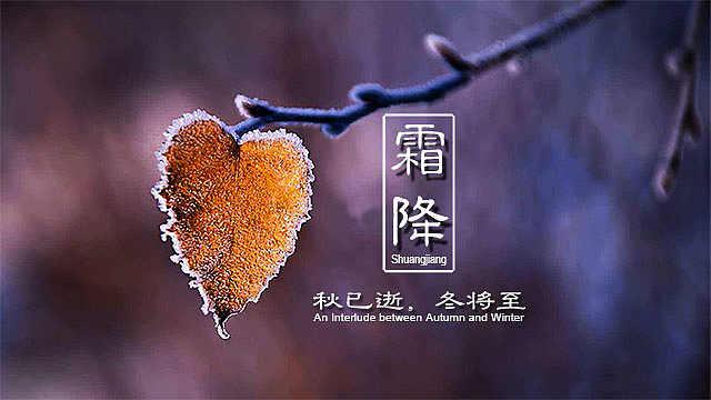 霜降:秋已逝,冬将至