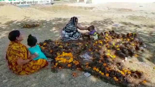 为求健康,印度人把孩子放牛粪上滚