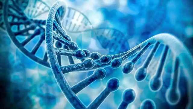 基因编辑婴儿试验罗生门