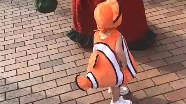一只在迪士尼乐园里迷路的小丑鱼