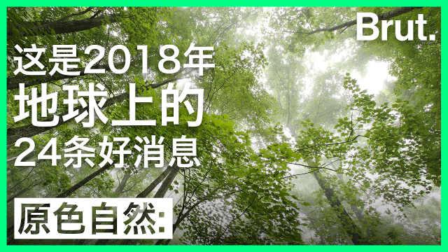 2018年地球环保好消息:中国有一条