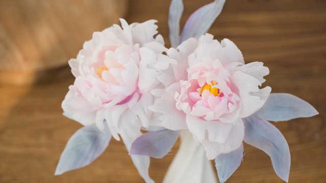 逛花市也找不到这么漂亮的牡丹花