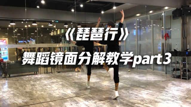 《琵琶行》舞蹈镜面分解教学p3