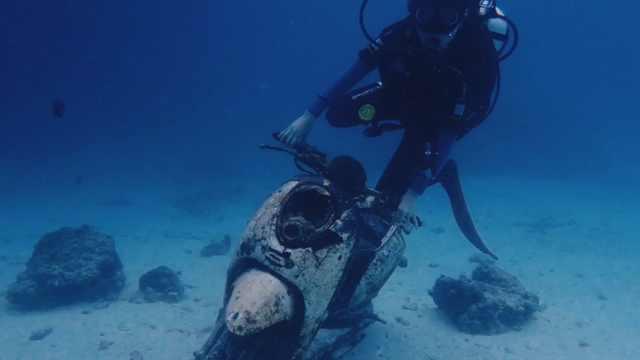 成功拿到了潜水证,再见啦海底世界