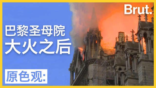 巴黎圣母院大火后:她的明天在哪里