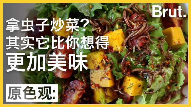 昆虫或将成为新食物:你想尝尝吗?