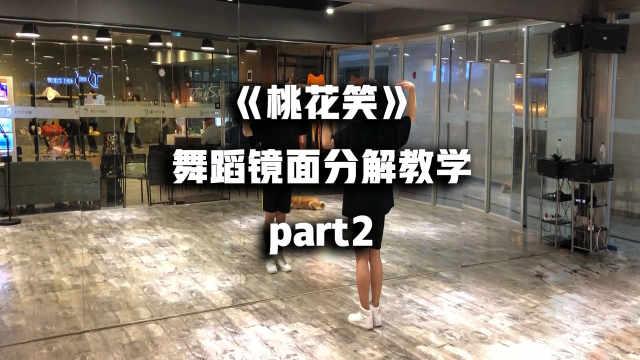 《桃花笑》舞蹈镜面分解教学part2