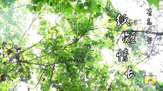 青岛大学,我的故事还是关于你啊