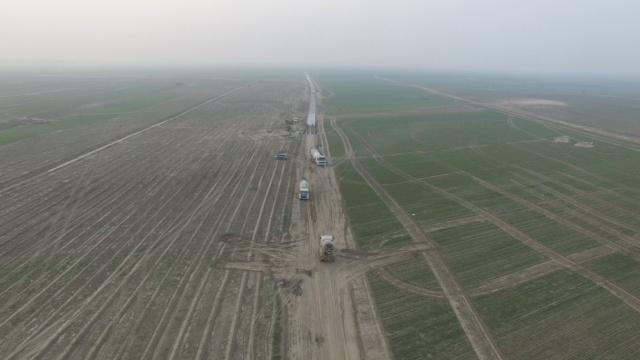 施工车闯入黄河湿地,成群灰鹤跑了