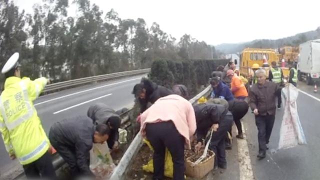 村民穿高速抢翻车货物,称不怕危险