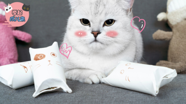 纸筒秒变猫玩具